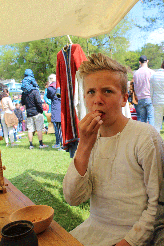 Viking Life© Nille Glæsel023
