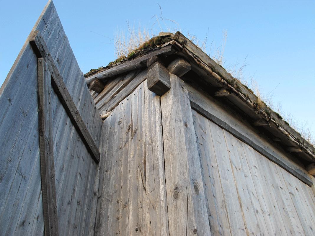 Viking Life© Nille Glæsel081