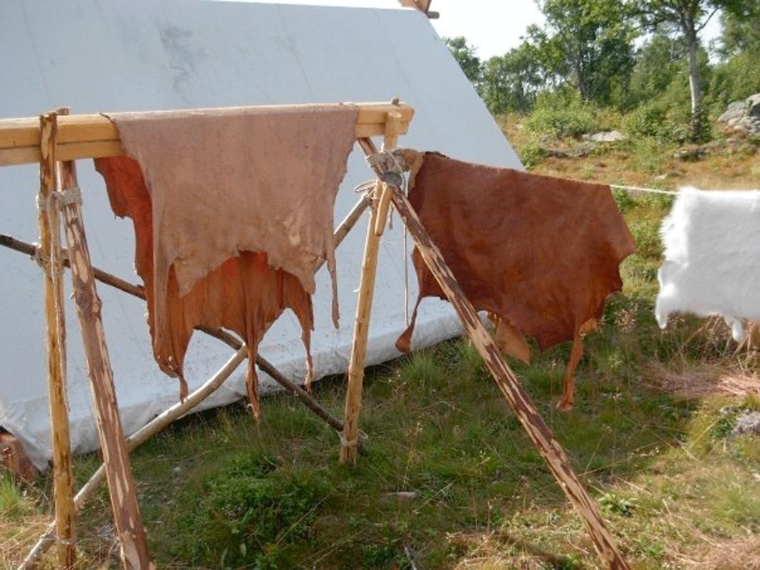 Viking Skin© Nille Glæsel 98